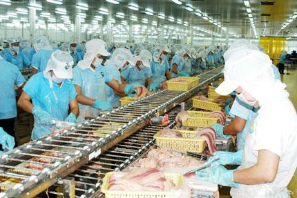 Xuất khẩu cá tra được hưởng lợi lớn từ FTA Việt Nam – EAEU